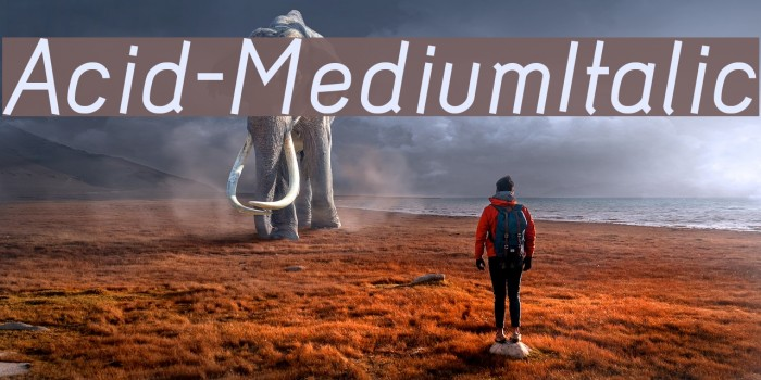 Acid-MediumItalic Polices examples