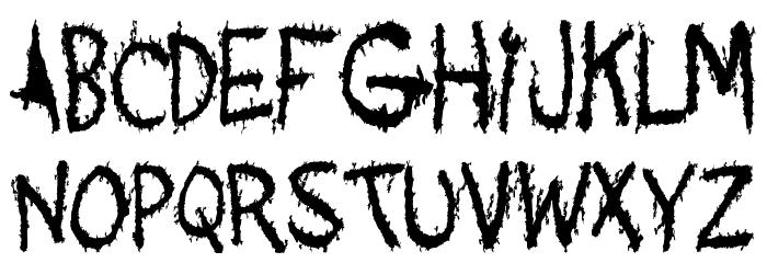 Acquaintance Font Litere mici