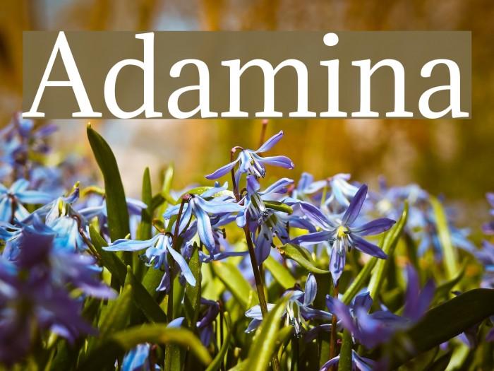 Adamina Fonte examples