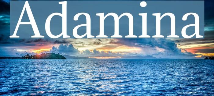 Adamina Font examples