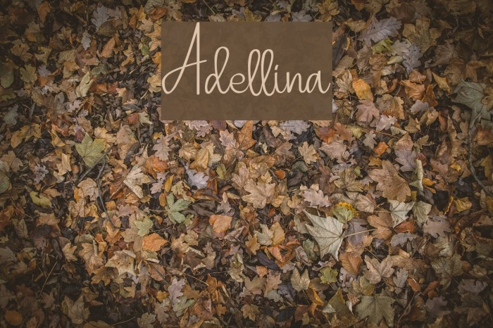 Adellina Font examples