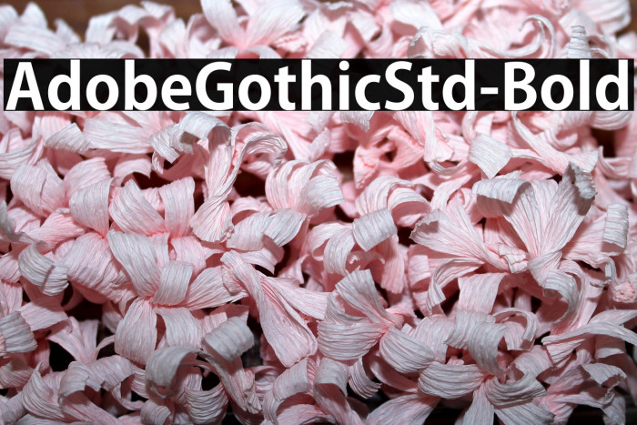 AdobeGothicStd-Bold Fonte examples