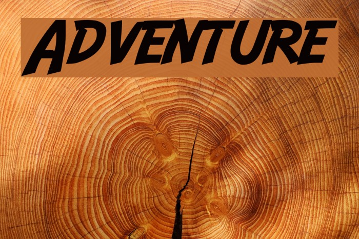 Adventure Font examples