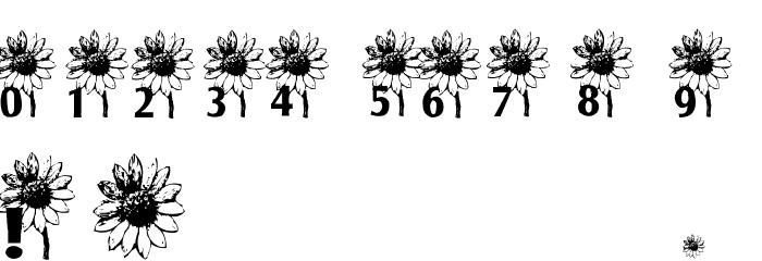 AEZ sunflower letters Шрифта ДРУГИЕ символов