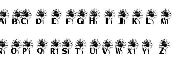 AEZ sunflower letters Шрифта ВЕРХНИЙ