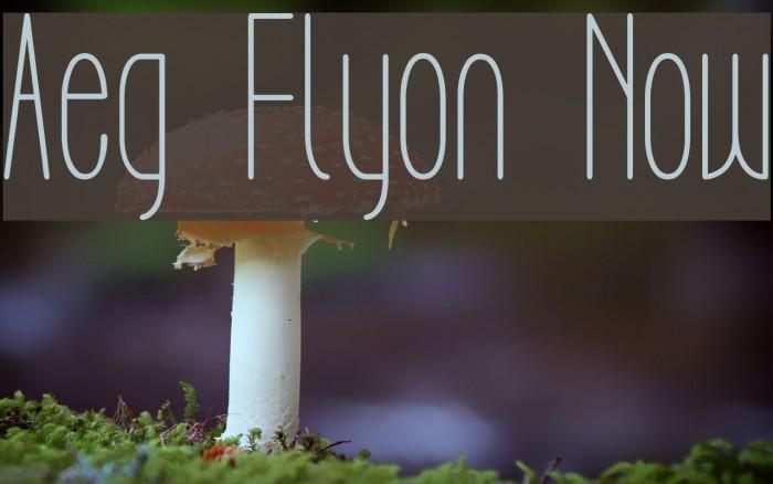 Aeg Flyon Now Fonte examples