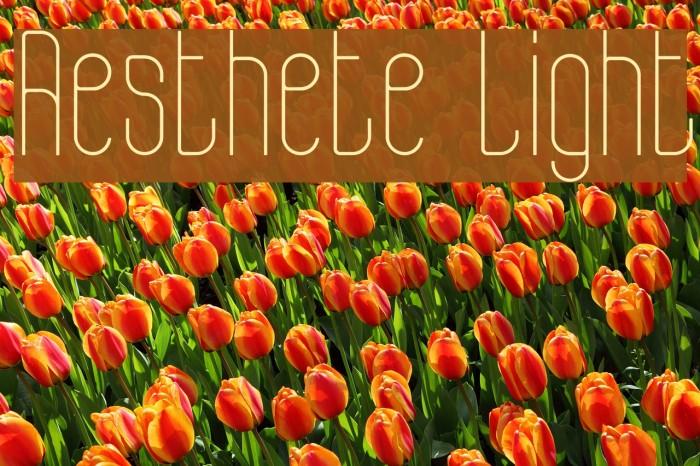 Aesthete Light Font examples