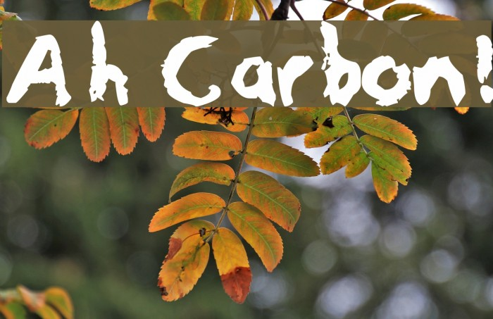 Ah Carbon! フォント examples