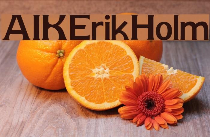 AIK-ErikHolm Шрифта examples