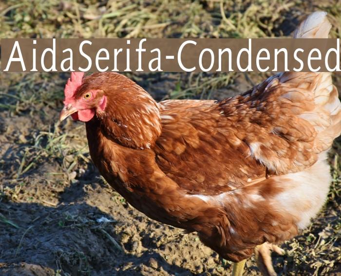 AidaSerifa-Condensed Шрифта examples