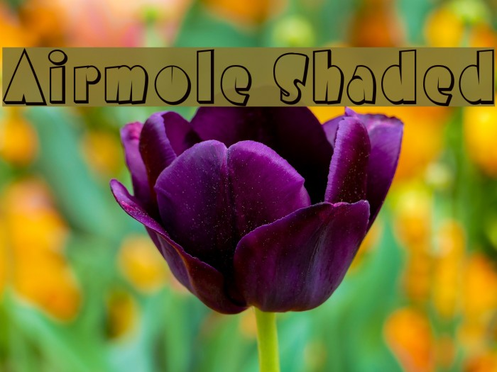 Airmole Shaded फ़ॉन्ट examples