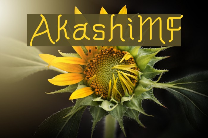 AkashiMF Fonte examples