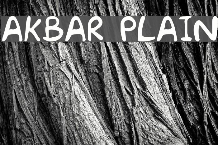Akbar  Plain Font examples