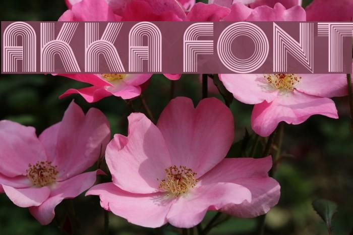 Akka لخطوط تنزيل examples