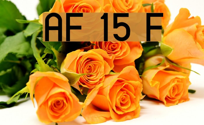 AlFars 15 Farnaz Font examples