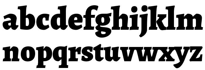 Alegreya Black Font LOWERCASE