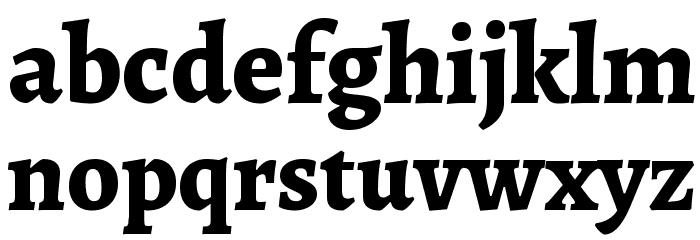 Alegreya ExtraBold Font LOWERCASE