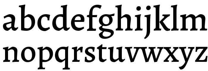 Alegreya Medium Font LOWERCASE