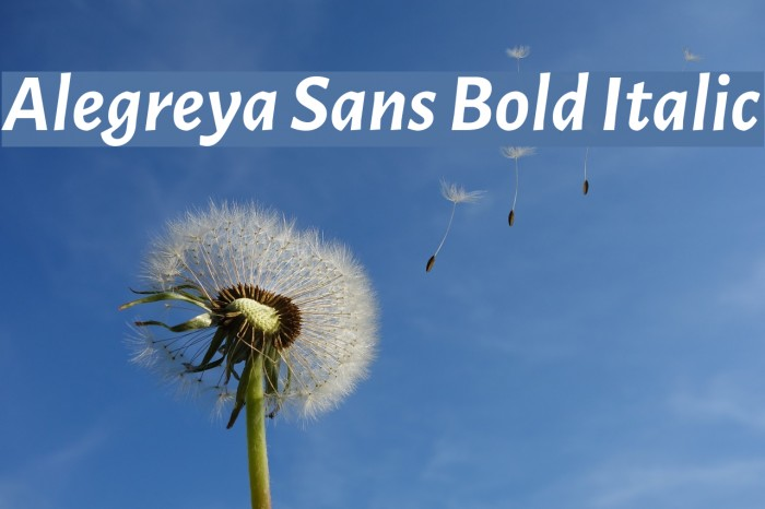 Alegreya Sans Bold Italic Font examples