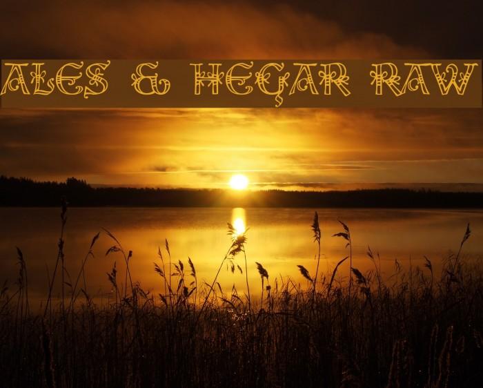 Ales & Hegar Raw Font examples
