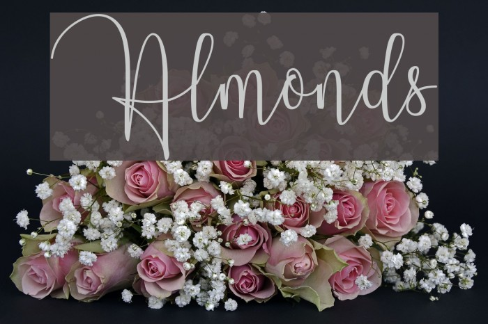 Almonds Шрифта examples