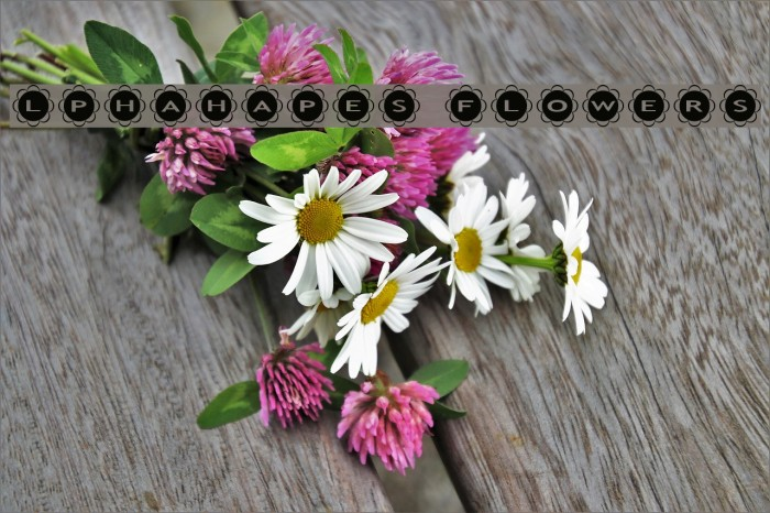 AlphaShapes flowers Шрифта examples