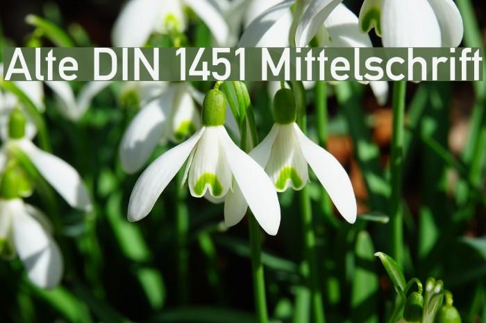 Alte DIN 1451 Mittelschrift Font examples