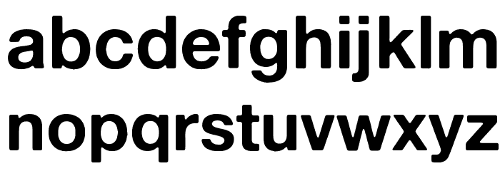 Alte Haas Grotesk Bold Font LOWERCASE