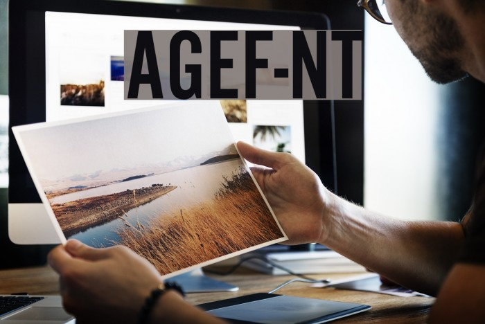 AlternateGothicEF-NoTwo Font examples