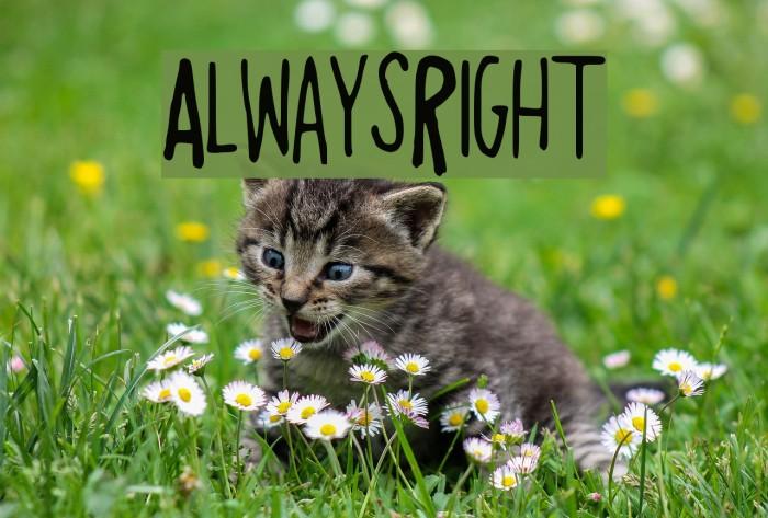 AlwaysRight Font examples