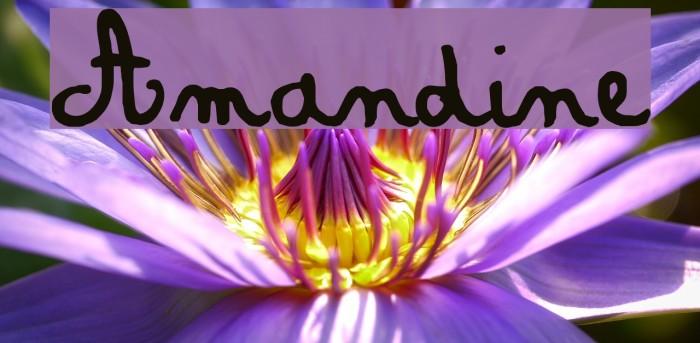 Amandine Шрифта examples