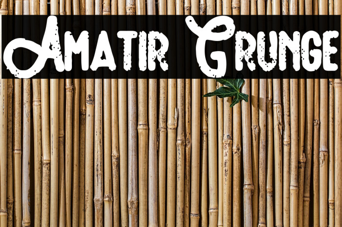 Amatir Grunge Шрифта examples