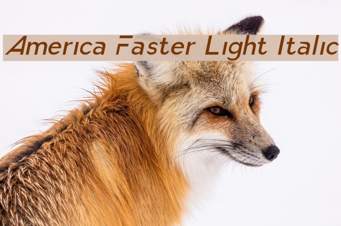 America Faster Light Italic Font examples