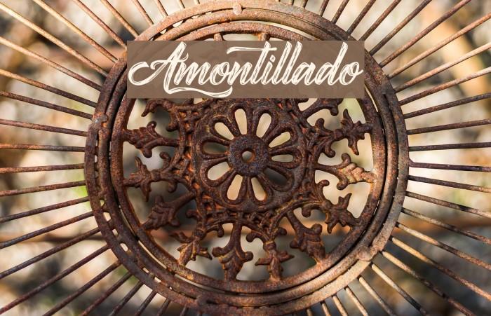 Amontillado Font examples