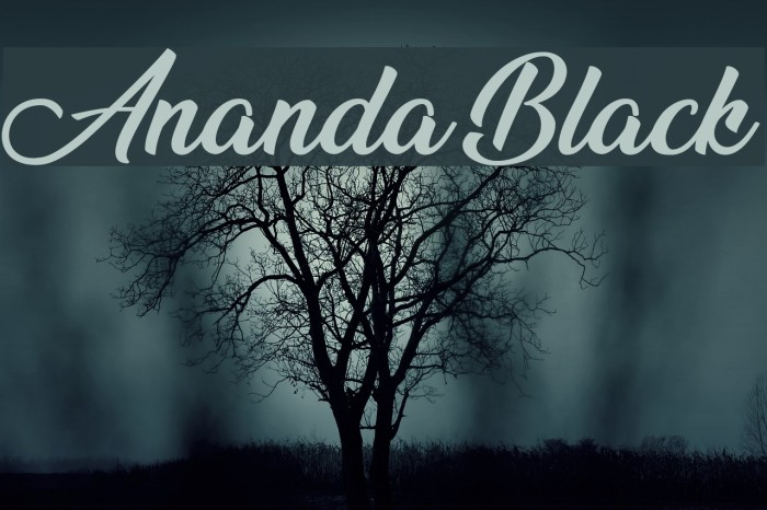 Ananda Black Font examples