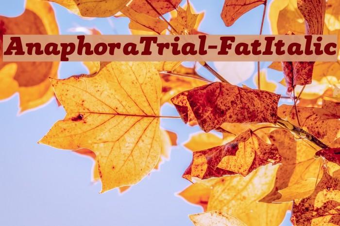AnaphoraTrial-FatItalic Font examples