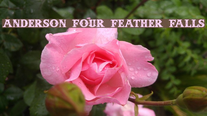 Anderson Four Feather Falls Font examples