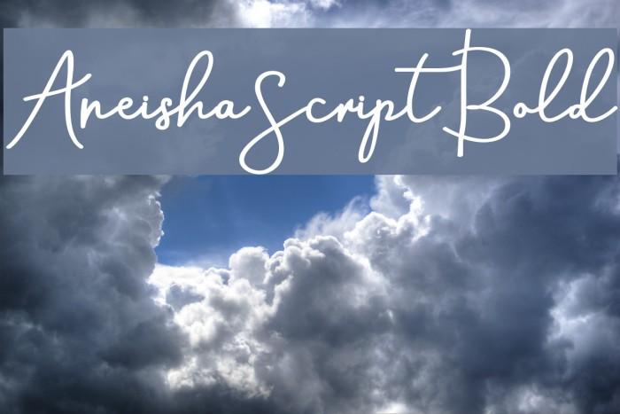 AneishaScriptBold Шрифта examples