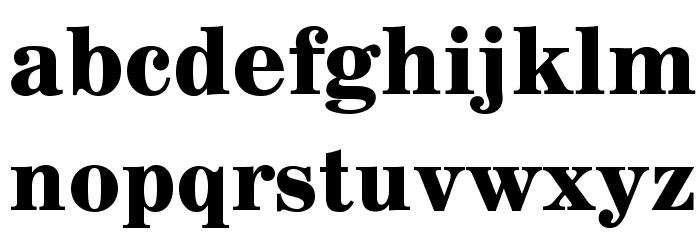 AnglicusOpti-Bold Font LOWERCASE