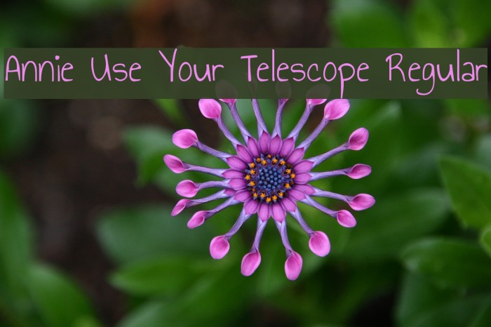 Annie Use Your Telescope Regular फ़ॉन्ट examples