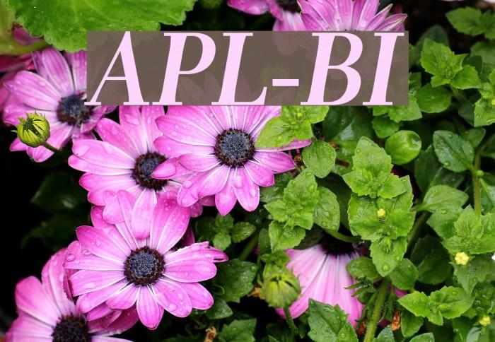 AntPoltLt-BoldItalic フォント examples