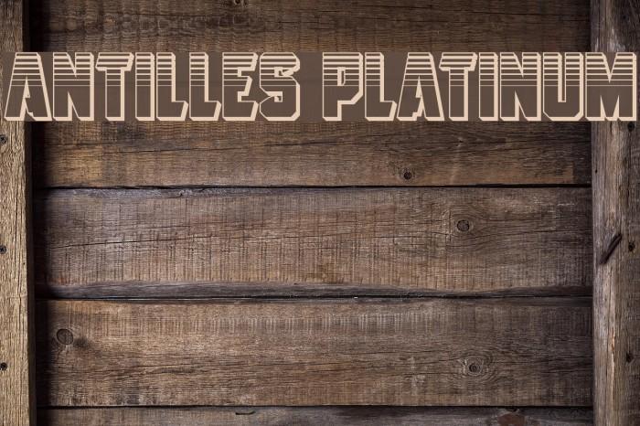 Antilles Platinum フォント examples