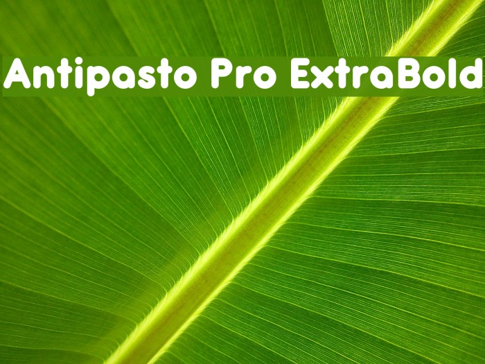 Antipasto Pro ExtraBold Schriftart examples
