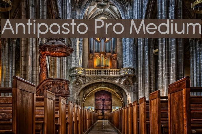 Antipasto Pro Medium Schriftart examples