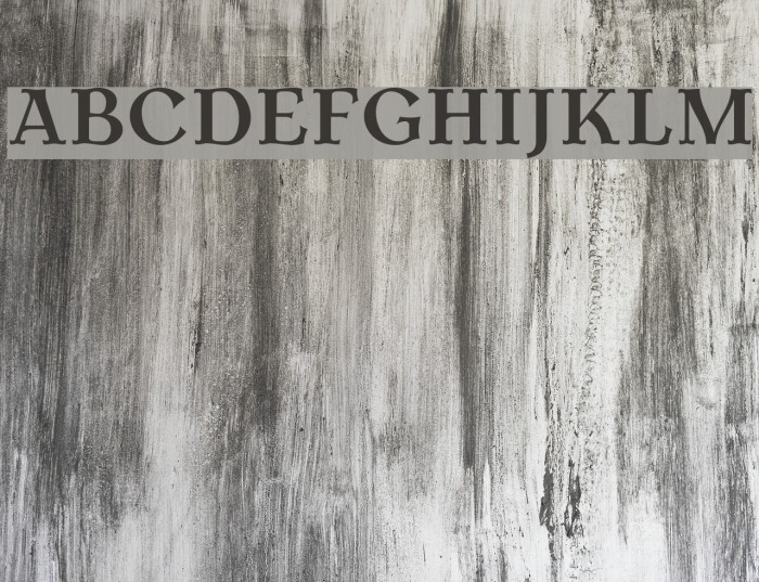 AntykwaTorunska-Bold Font examples