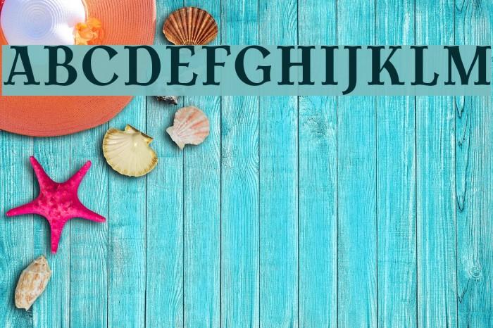 AntykwaTorunskaCond-Bold Шрифта examples