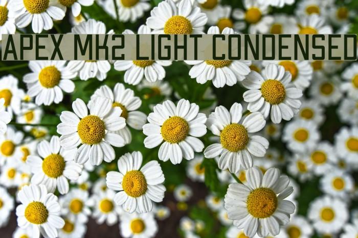 Apex Mk2 Light Condensed Шрифта examples
