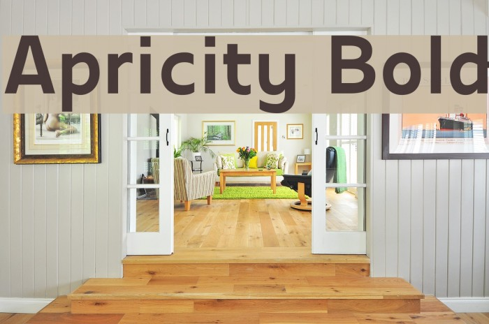 Apricity Bold Font examples