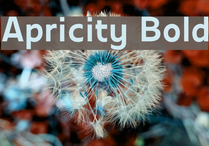 Apricity Bold Шрифта examples