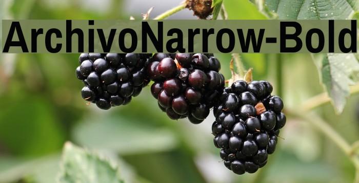 ArchivoNarrow-Bold Font examples